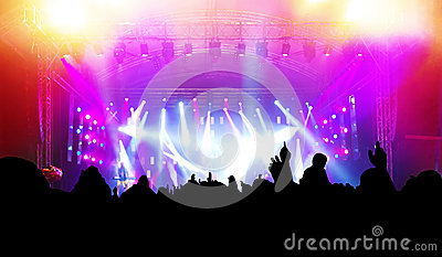 People on music concert, disco
