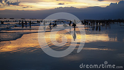 People playing on the beach in the evening
