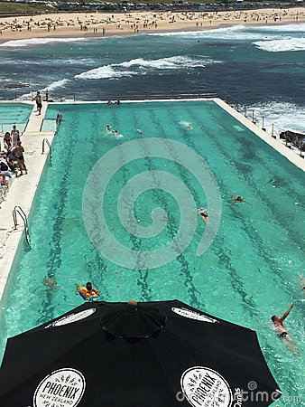 People In Swimming Pool Near Body Of Water During Daytime Free Public Domain Cc0 Image
