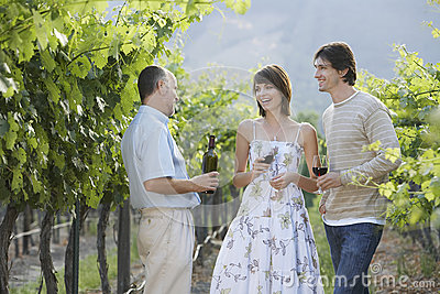 People Tasting Red Wine In Vineyard