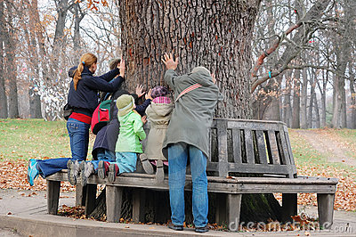 People Touching The Aincient Oak