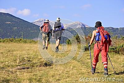 People trekking in the mountain