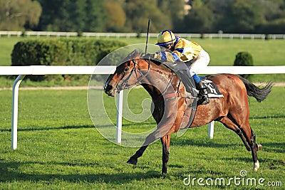 Pepa Havel in Horse Racing in Prague Editorial Photo