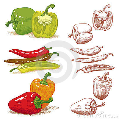Free Peppers Royalty Free Stock Image - 24107146