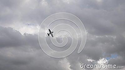 Pequeño avión en el cielo nublado almacen de video