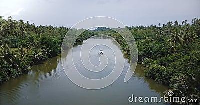 Pequeño barco blanco que navega lejos de la cámara a lo largo de un tranquilo río tranquilo en medio de la selva tropical salvaje metrajes