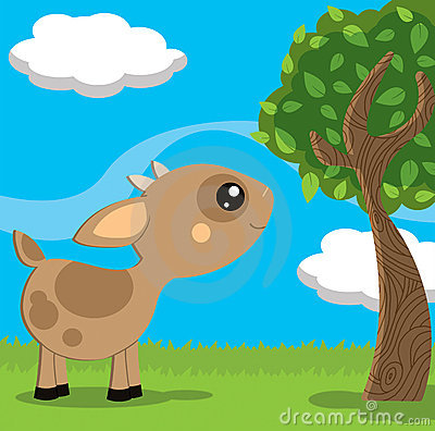 Pequeña cabra linda en un paisaje del campo