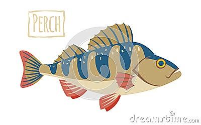 Perch Illustration Royalty Free Stock Image - Image: 18594196