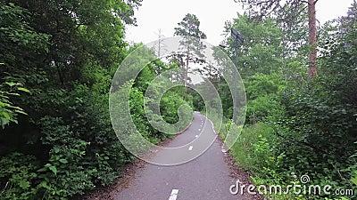 Percorso della bici nella foresta archivi video