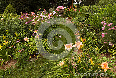 Perennial garden in Southwest Michigan