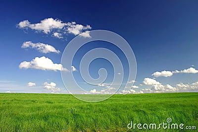 Perfect green field