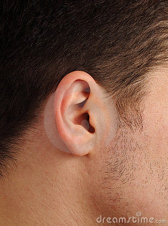 Perfect human ear