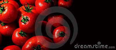 Perfect tomatoes with drops of water