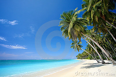 Perfect Tropical Island Paradise Beach Royalty Free Stock Photography - Image: 15159807