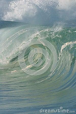 Perfect Tubing Wave in Hawaii