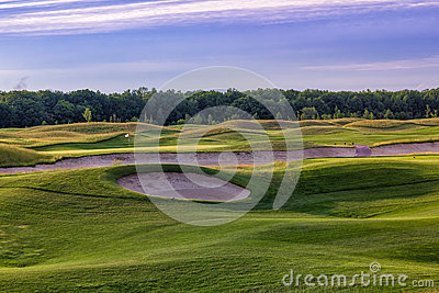 Perfect wavy grass on a golf field