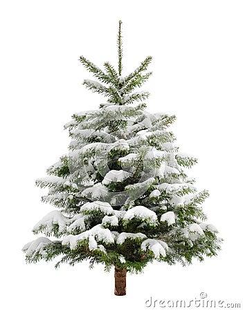 perfekter kleiner weihnachtsbaum im schnee lizenzfreie stockfotografie bild 34258687. Black Bedroom Furniture Sets. Home Design Ideas