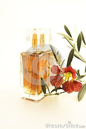 Free Perfume Stock Photos - 1889833