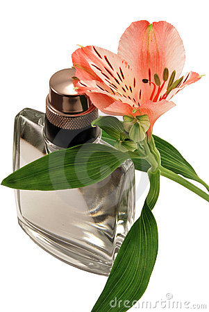 Perfume and an alstroemeria