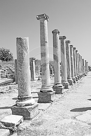 Free Perge Old Construction In Asia Turkey The Column  And The Roman Royalty Free Stock Photography - 62786027