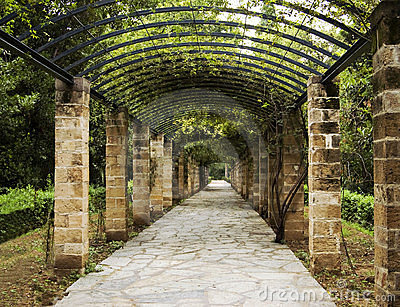 Pergola in Athens, Greece
