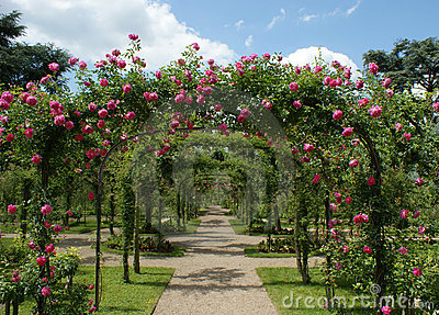 Pergola in een franse tuin stock foto afbeelding 9653220 for Franse tuin