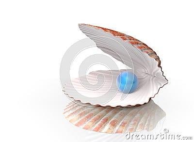 Perla azul en un shell