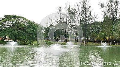 Permaisuri湖庭院是一个著名公园在Cheras 股票录像