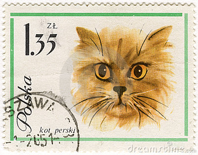 Persian (Longhair) cat on vintage post stamp