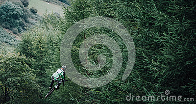 Person Jumping On A Bike In The Woods Free Public Domain Cc0 Image