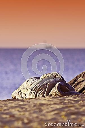 Person sleeping on beach