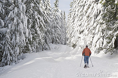 Person snowshoeing in winter