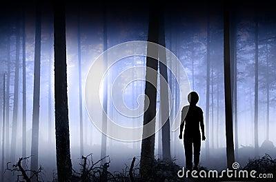 Persona en bosque nebuloso azul