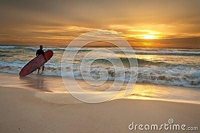Persona que practica surf que entra en el océano en la salida del sol