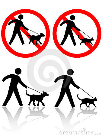 Free Persons Walk Dog Cat Pet Animals Royalty Free Stock Image - 3853866