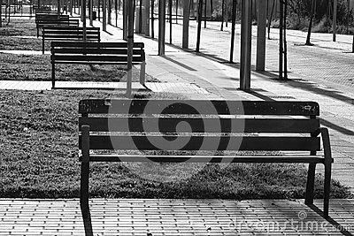 Perspective bench