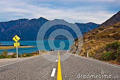 Perspective of highway road freeway