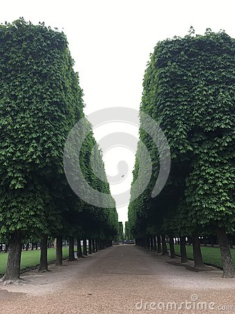Free Perspective In Green Royalty Free Stock Photography - 93870157