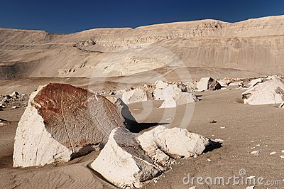 Peru, Toro Muerto Petroglyphs