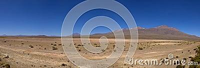 Peruvian highland, lake and vicuñas