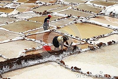 Peruvian salinas Editorial Stock Image