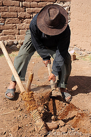 Peruvian tool for farming