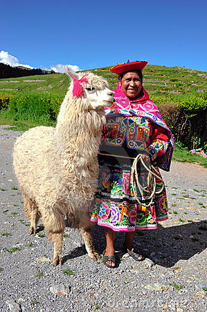 Free Peruvian Woman In Traditional Dress With Lama. Stock Images - 19803294