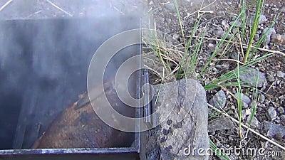 Pescados de agua dulce en ahumadero del metal Fondo del alimento Fondos al aire libre metrajes