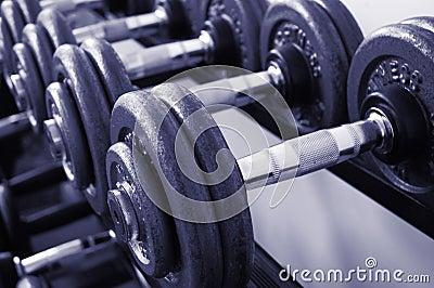 Pesos de la gimnasia