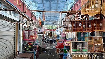 Pet bird market side street alley Shanghai, China Editorial Stock Photo