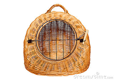 Pet carrier basket