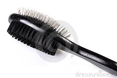 Pet comb.