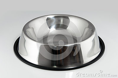 Pet food dish