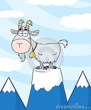 Pet goat on a mountain
